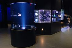 Nouveau pavillon de l'aquarium du Québec présentant des méduses, des hippocampes et des raies. Réalisation graphique Groupe GID, 2012 / Illustrations : Sébastien Meunier