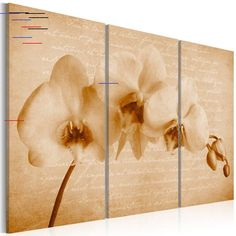 'Orchid' Graphic Art Print Multi-Piece Image on Canvas Ebern Designs Size: H x W Painting Frames, Painting Prints, Art Print, Frames On Wall, Framed Wall Art, Art Mur, Canvas Art, Canvas Prints, Leonid Afremov Paintings