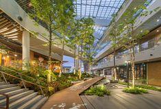 mega food walk - Google Search Villa Architecture, Landscape Architecture Design, Landscape Plans, Urban Landscape, Building Architecture, Sustainable Architecture, Contemporary Architecture, Modern Landscaping, Outdoor Landscaping