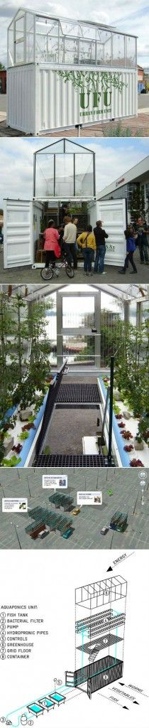 Shipping-Container-Turned-into-a-Urban-Farm-Unit-m