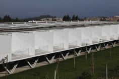 Row-Houses in Bom Sucesso. Location: Óbidos, Portugal; architects: Inês Lobo Arquitectos; photo: Leonardo Finotti; year: 2013