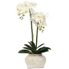 Like fine art, these silk botanicals will add elegance and grace to any room. Arranged by professional designers, these arrangements are so life-like it's hard to differentiate them from the real thin