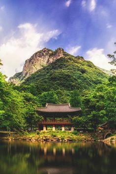 Baegyangsa Temple in South Korea Places Around The World, Around The Worlds, Wonderful Places, Beautiful Places, South Korea Photography, Korean Peninsula, South Korea Travel, Jeju Island, Buddhist Temple