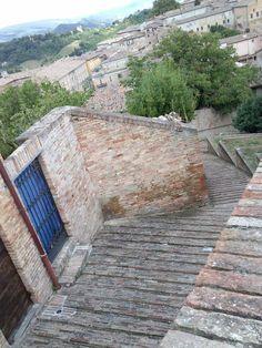 La vita è fatta a scale... Urbino.
