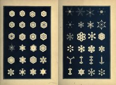 A Victorian Argument That Snow Is Holy, Illustrated by a Beautiful Catalog of Flakes