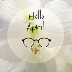 #vuilletvega #helloapril #april #avril #avril2016 #flower #amaryllis #sign330 #lunettes #glasses #gafas #brillen #occhiali #spectacles #frames #eyewear #originefrancegarantie #entreprisedupatrimoinevivant #picoftheday #picofthemonth #visionexpoeast #morez # # # # #