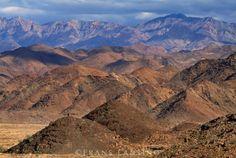 Arid coastal mountains feature high diversity of plant life, Richtersveld National Park, South Africa