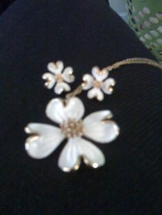 Painted White & Gold Daisy set