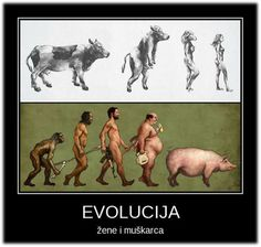 EVOLUTION... Funny Puns, Wtf Funny, Funny Texts, Hilarious, Funny Stuff, People Art, Adult Humor, Offensive Memes, Funny Photos