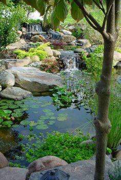 Gartenteiche Wasserpflanzen Teich Gartengestaltung mit Steinen