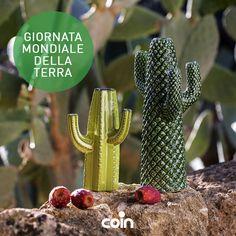 Earth Day: OGGI è la Giornata Mondiale della Terra. Cogliete l'occasione per coltivare una nuova pianta..e se non avete il pollice verde cercate su coincasa.it questi simpatici cactus!