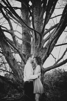 Beautiful tree in an engagement session