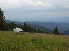 Krusne hory ( Ore Mountains), Czech republic