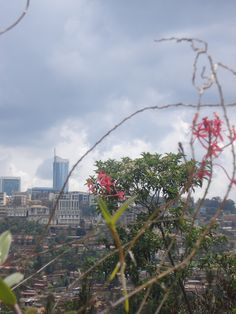 Kigali, Rwanda...my favorite place in Africa! (taken by Sarah Croaker)