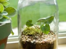 How to Grow a Watercress Container Garden | Landscaping Ideas and Hardscape Design | HGTV