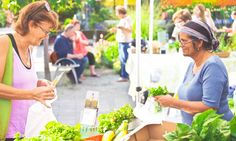 Toronto Botanical Gardens on Lawrence East -- The organic farmers' market takes place YEAR-ROUND on Thursdays, 2 to 7 p. Toronto, Little Sisters, Farmers Market, Botanical Gardens, Special Events, Organic, Marketing, Farmers, Ideas