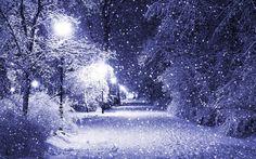 Image via We Heart It #background #nature #photography #romantic #snowfall #trees #walk #wallpaper #fondos