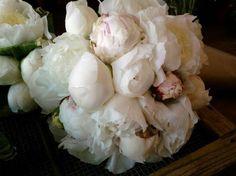 Ramos de novia con peonías: Fotos de las propuestas - Bouquet de peonías blancas