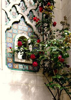 Roses are everywhere in Morocco......