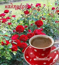 Greek Language, Good Morning Good Night, Greek Quotes, Love Pictures, Beautiful Images, Happy Birthday, Smoothies, Greece, Gifs