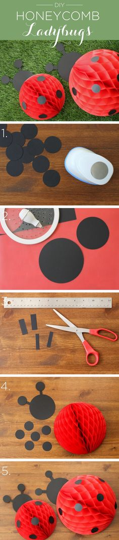 DIY Honeycomb Ladybugs! Perfect for a little girls Ladybug Birthday Party!