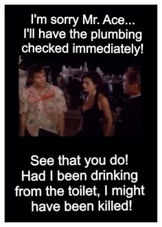 this movie and the second one make me laugh till I almost cough up a lung Make Em Laugh, I Love To Laugh, Tv Quotes, Movie Quotes, Funny Movies, Good Movies, Funny Picture Quotes, Funny Quotes, Ace Ventura Pet Detective