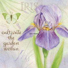 JS-D389 botanical iris