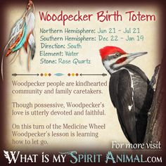 Woodpecker Native American Zodiac Sign Birth Totem 1200x1200