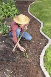 How to Kill Weeds Before Planting Vegetables