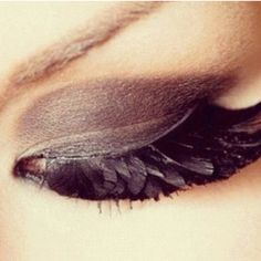 Eyelashes of a raven's wing