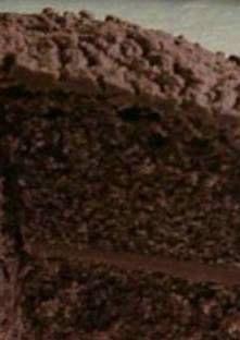 Préchauffer le four à 180°C.Beurrer 2 moules de 21 cm de diamètre.Mélanger...