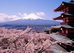 Ile kosztuje wycieczka do Japonii? Jak przygotować budżet na Japonię?