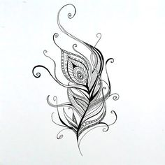 Great sketch of peacock feather. . Color: Black. Tags: Easy, Beautiful, Great