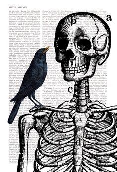 Esqueleto y Cuervo impresión en la página de libro Vintage