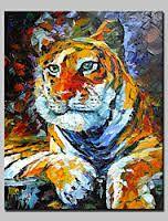 """Résultat de recherche d'images pour """"image main animaux avec peinture"""""""