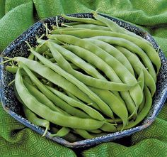 Growing heirloom beans, including string, scarlet runner, pole and lima beans, are flavorful and fun to eat.
