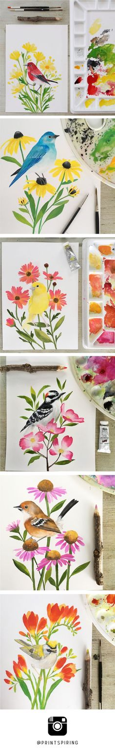 Bird & flower alphabet painting a day series! A is for Apapane and Argyranthemums. B is for Bluebird and Blacke-eyed Susan. C is for Canary and Coreopsis. D is for Downy Woodpecker and Dogwood. E is for Elepaio and Echinacea. F is for Firecrest and Freesia.   Watercolour + Gouache paintings by Dee from PRINTSPIRING.