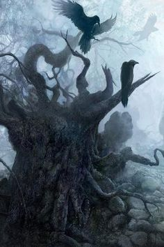 birds and a dead, upturned tree = awesome looking, with a twinge of bleakness