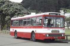 Volvo trolleybuses in the red Busses, What Is Like, Volvo, New Zealand, Airplanes, Vehicles, Boats, Big, Planes