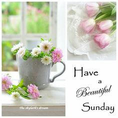 Good Morning 💝 Have A Blessed & Beautiful Day 🌸 💕 💒 🙏 Happy Morning Quotes, Good Night Quotes, Morning Messages, Morning Greeting, Good Sunday Morning, Morning Wish, Good Morning Images, Have A Beautiful Sunday, Have A Blessed Sunday