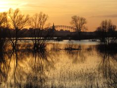 View on Nijmegen from the Ooijpolder.