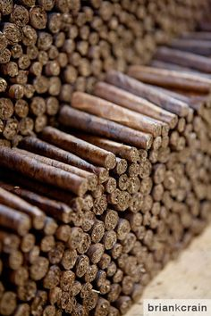 My latest assignment took me the the Dominican Republic. My assignment was to photograph the making of cigars for a tobacco manufacturing company who wanted to update their marketing images with new photography for a new website launch. I have to say that this was one of my most unique …Continue reading