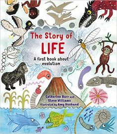 The Hardcover of the The Story of Life: A First Book about Evolution by Catherine Barr, Steve Williams, Amy Husband Maisie Williams, Steve Williams, Album Jeunesse, Scary Places, History Museum, Natural History, Nonfiction, Childrens Books, Good Books