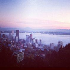foggy portland morning.