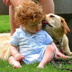 ginger baby + puppy