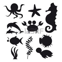 silhouette sea animals isolated over white background. vector