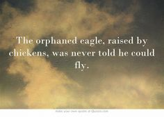 The orphaned eagle, raised by chickens, was never told he could fly.