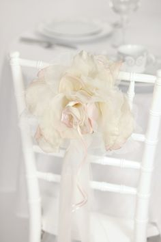 Chair rose - beautiful!