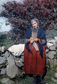 A woman knits wool clothing under a fuchsia tree.In 1927, a National Geographic photographer documented the Emerald Isle with one of the first color photography processes.