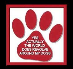 Yes, the world revolves around my dogs (well at least my world and that is all that matters). I Love Dogs, Puppy Love, Cute Dogs, Pet Sitter, Dog Rules, Crazy Dog, Animal Quotes, Pet Quotes, Friend Quotes